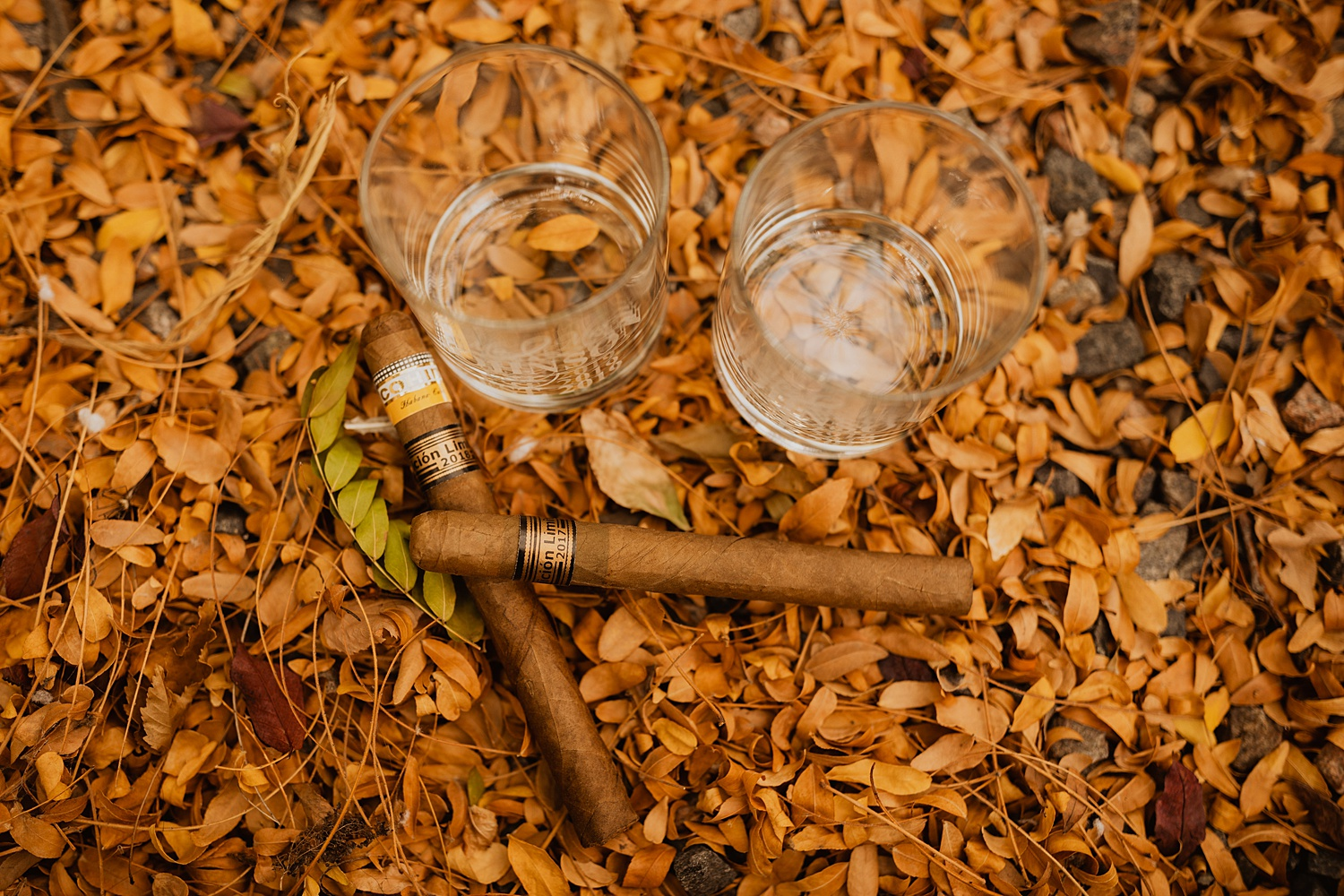 Colorado Wedding | Specialty Cigars | Bride and Groom Glasses | Cassie Madden Photography